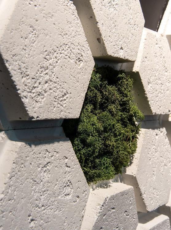 Revestimentos Polygon Etrusco Branco e Moss Verde Bosque
